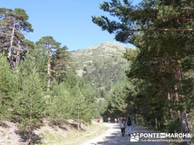 Calzada Romana - Senderismo fin de semana; rutas pedriza; ruta por madrid